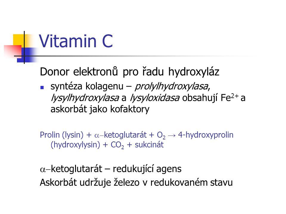 Vitamin C Donor elektronů pro řadu hydroxyláz