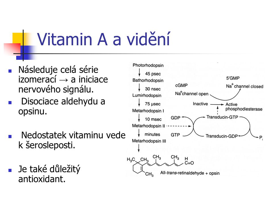 Vitamin A a vidění Následuje celá série izomerací → a iniciace nervového signálu. Disociace aldehydu a opsinu.