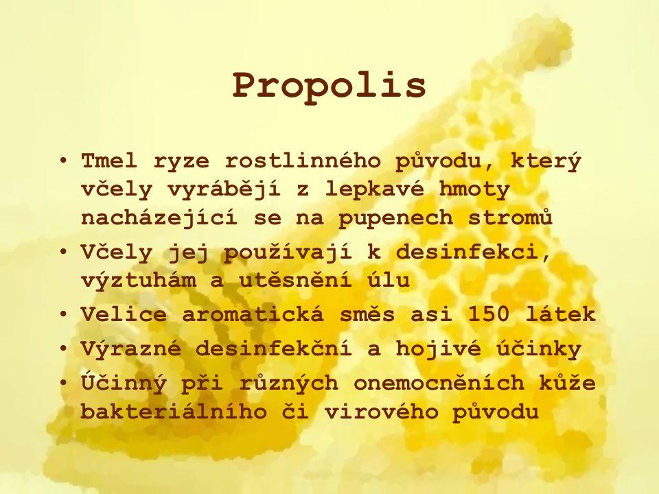 Propolis Tmel ryze rostlinného původu, který včely vyrábějí z lepkavé hmoty nacházející se na pupenech stromů.