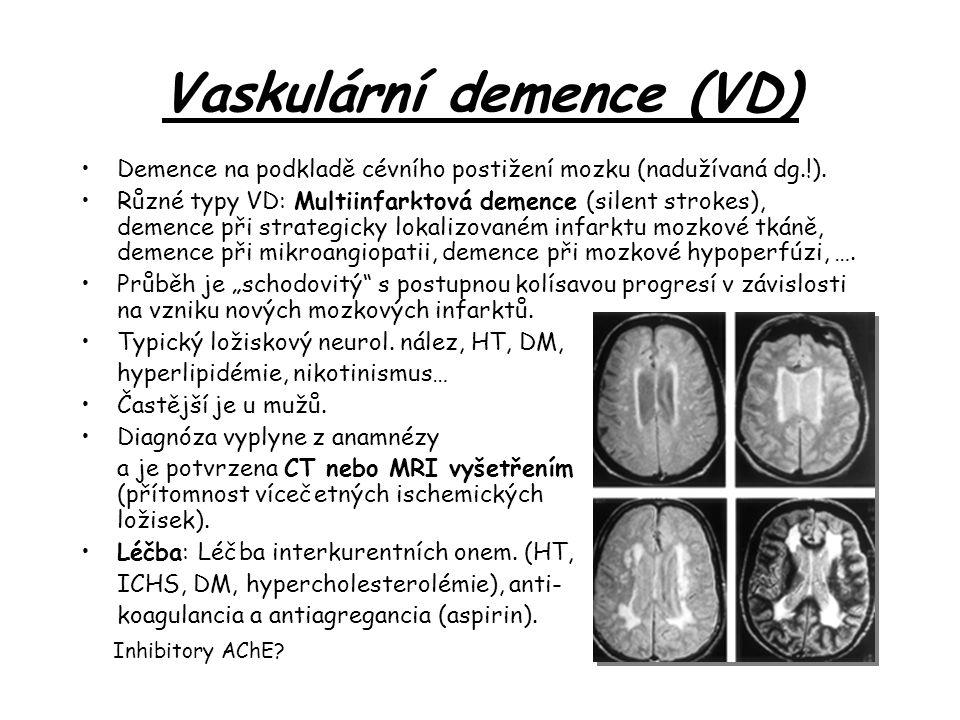 Vaskulární demence (VD)