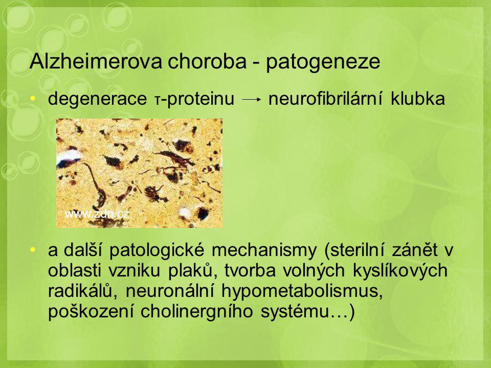 Alzheimerova choroba - patogeneze