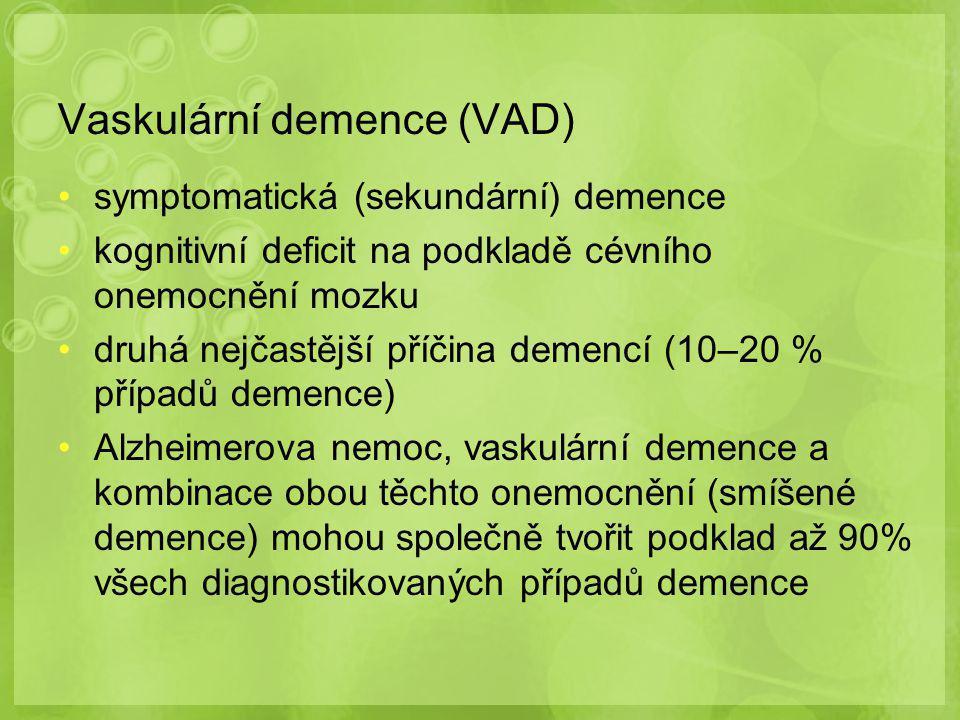 Vaskulární demence (VAD)