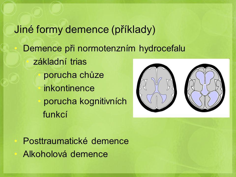 Jiné formy demence (příklady)