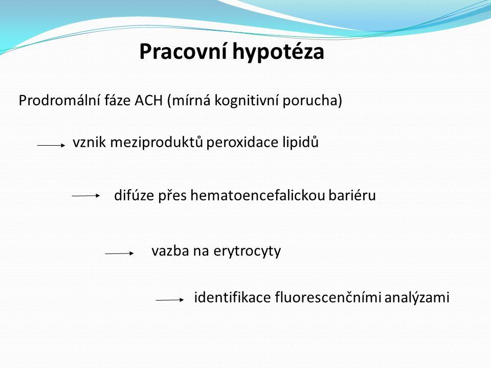 Pracovní hypotéza Prodromální fáze ACH (mírná kognitivní porucha)