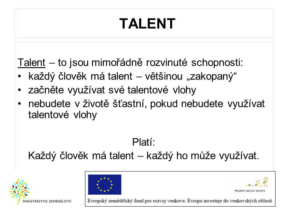 Každý člověk má talent – každý ho může využívat.