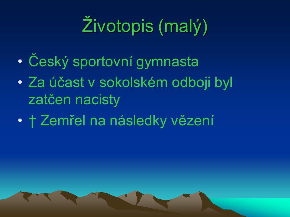 Životopis (malý) Český sportovní gymnasta