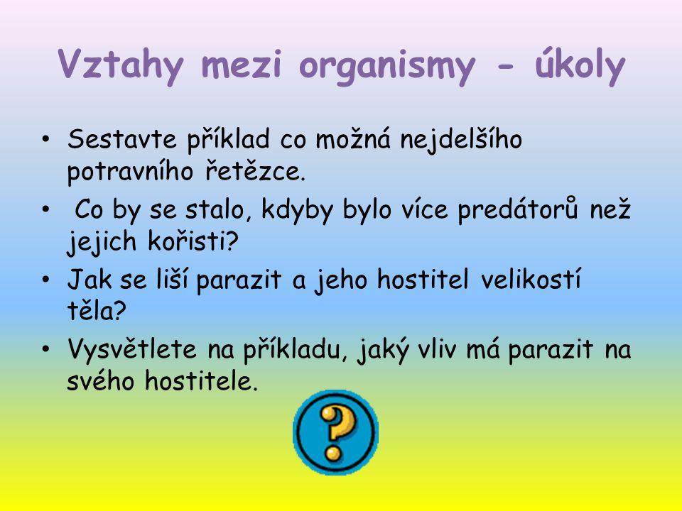 Vztahy mezi organismy - úkoly