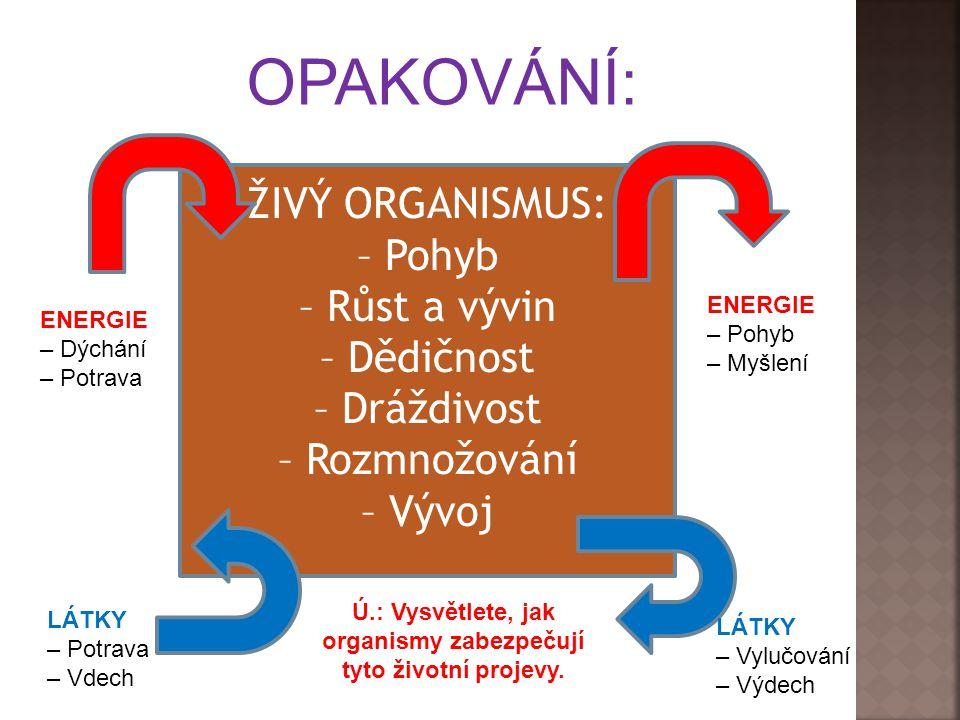 Ú.: Vysvětlete, jak organismy zabezpečují tyto životní projevy.
