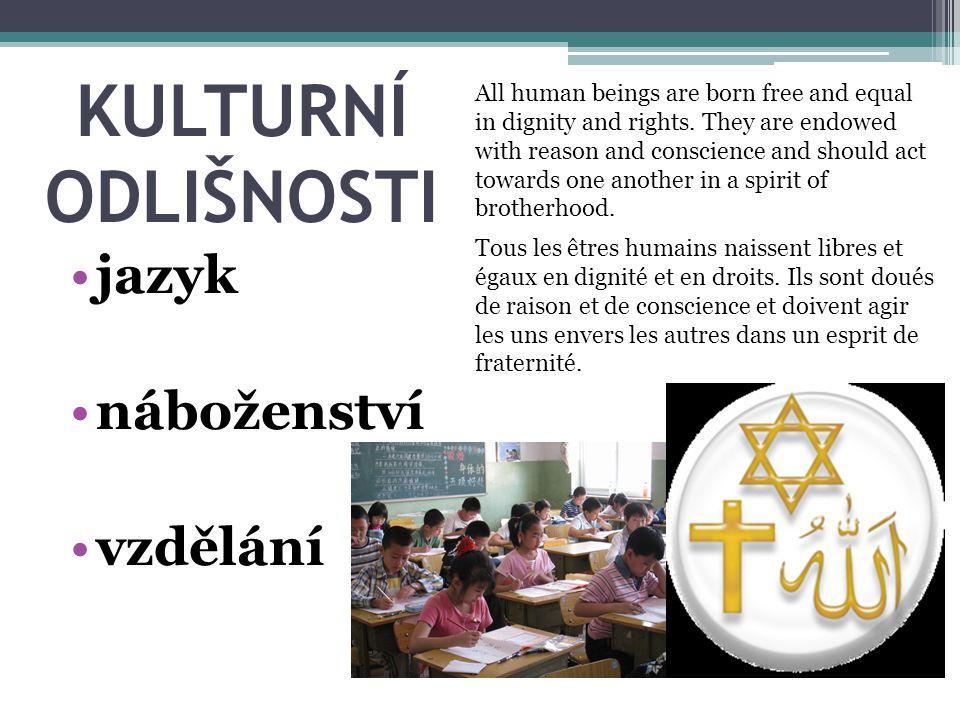 KULTURNÍ ODLIŠNOSTI jazyk náboženství vzdělání