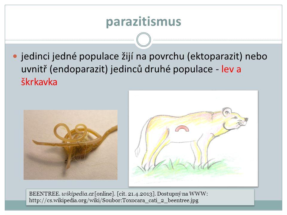 parazitismus jedinci jedné populace žijí na povrchu (ektoparazit) nebo uvnitř (endoparazit) jedinců druhé populace - lev a škrkavka.