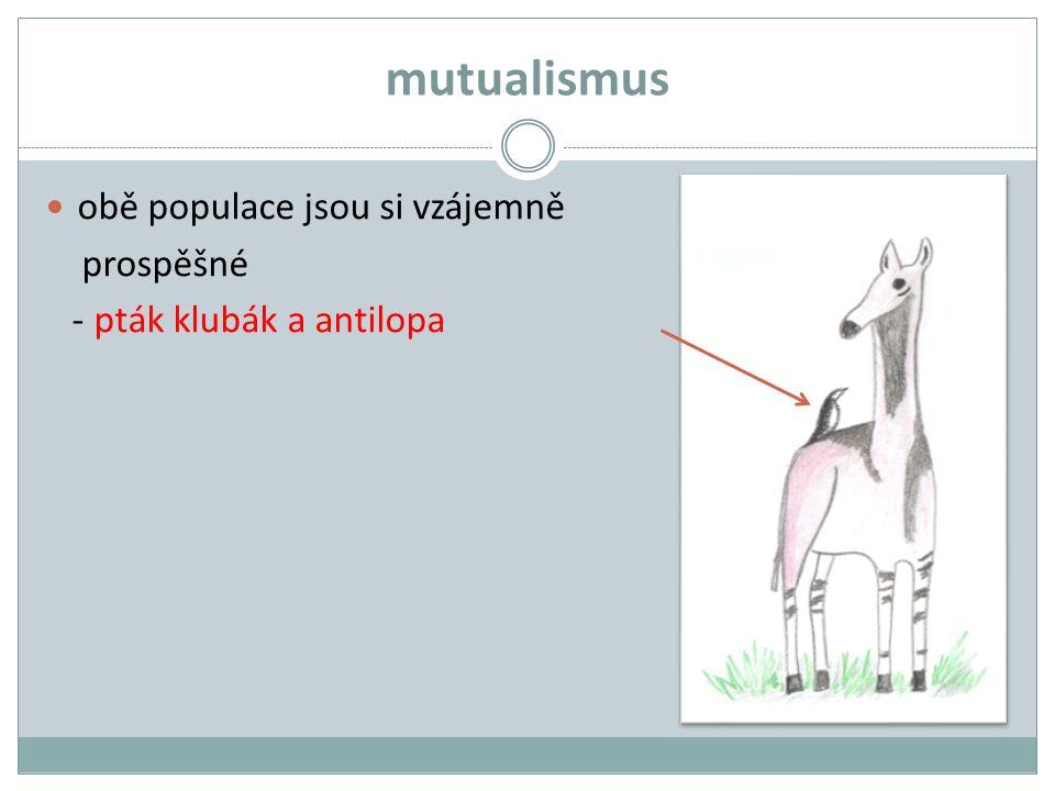 mutualismus obě populace jsou si vzájemně prospěšné