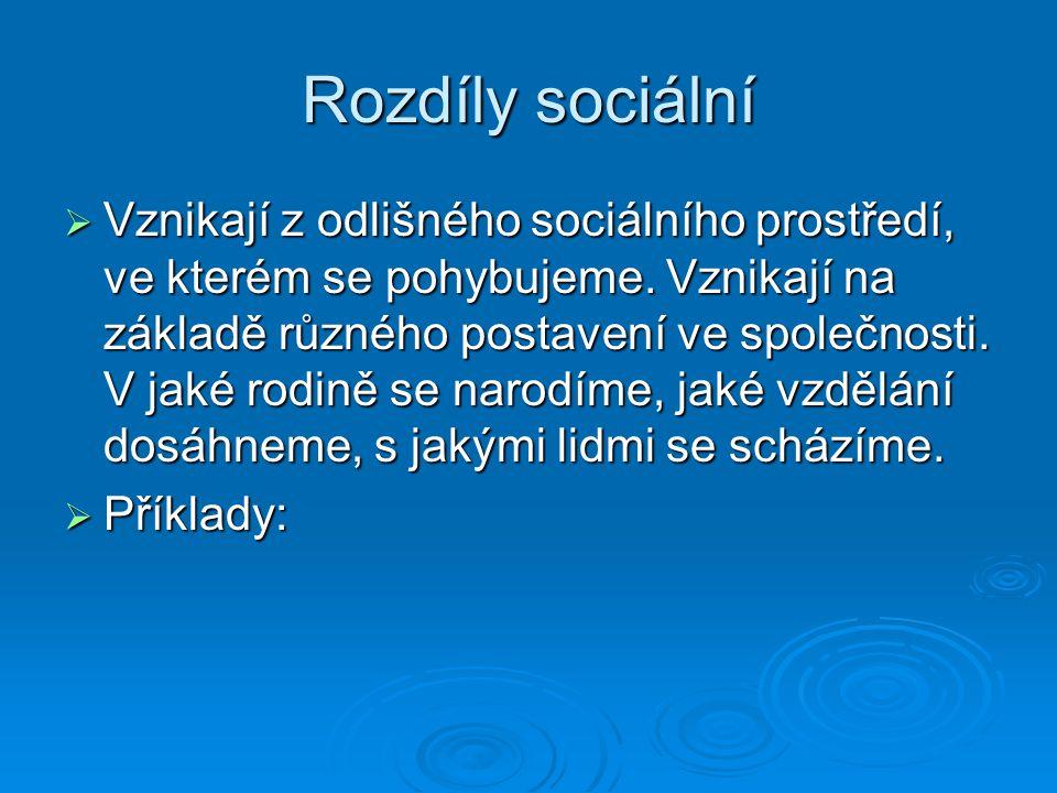 Rozdíly sociální