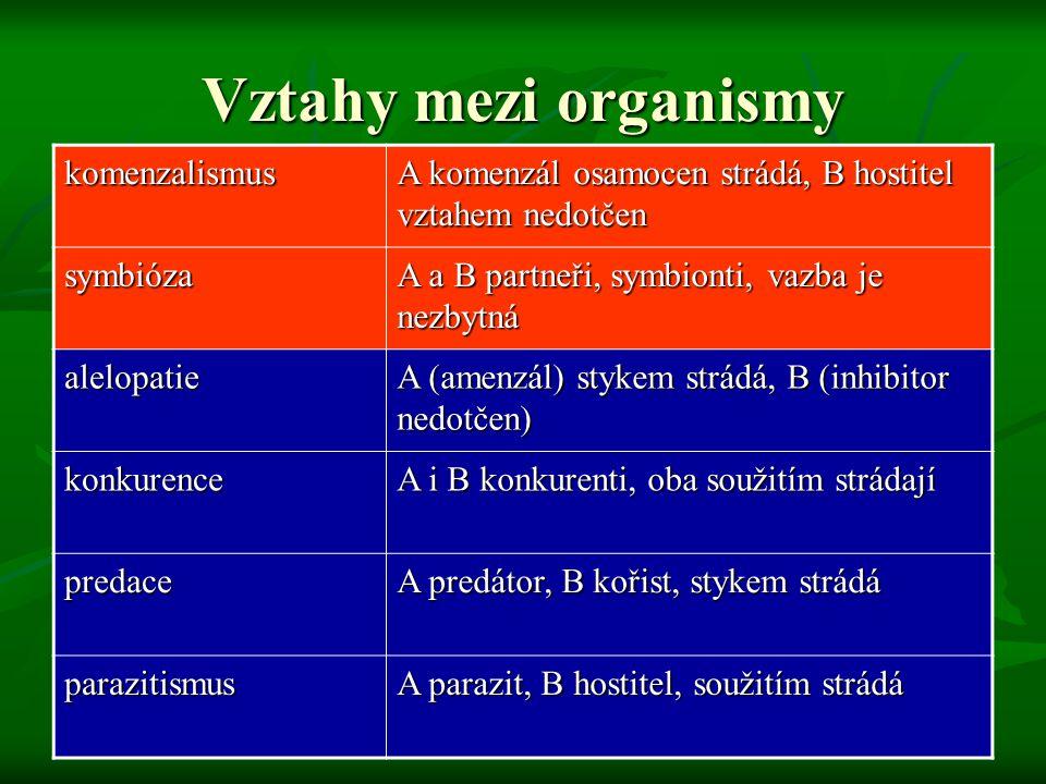 Vztahy mezi organismy komenzalismus