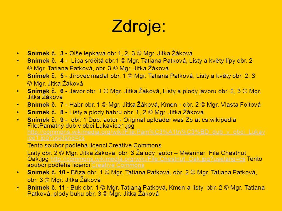 Zdroje: Snímek č. 3 - Olše lepkavá obr.1, 2, 3 © Mgr. Jitka Žáková