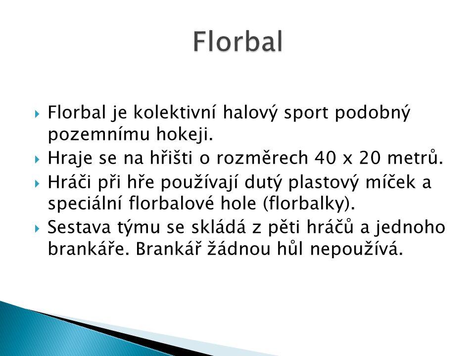 Florbal Florbal je kolektivní halový sport podobný pozemnímu hokeji.