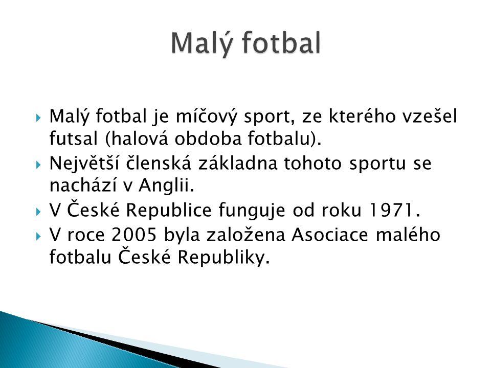 Malý fotbal Malý fotbal je míčový sport, ze kterého vzešel futsal (halová obdoba fotbalu).