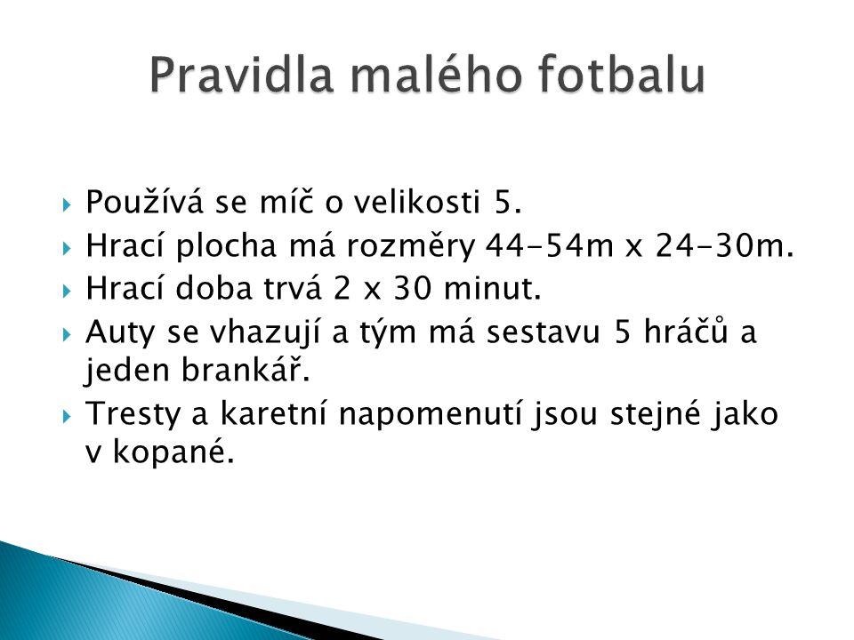 Pravidla malého fotbalu