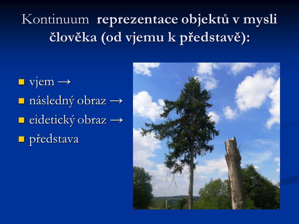Kontinuum reprezentace objektů v mysli člověka (od vjemu k představě):