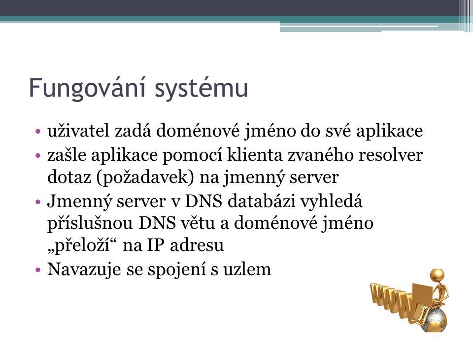 Fungování systému uživatel zadá doménové jméno do své aplikace