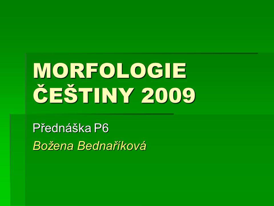 Přednáška P6 Božena Bednaříková
