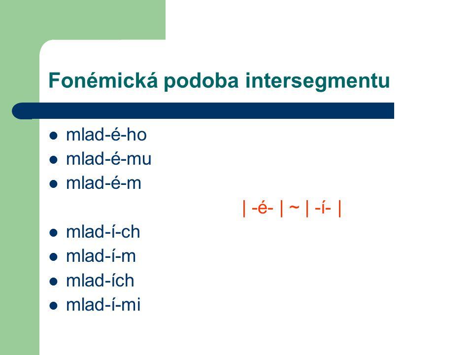 Fonémická podoba intersegmentu