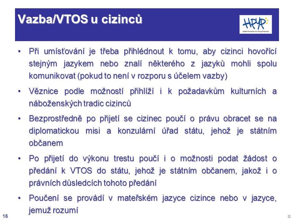 Vazba/VTOS u cizinců