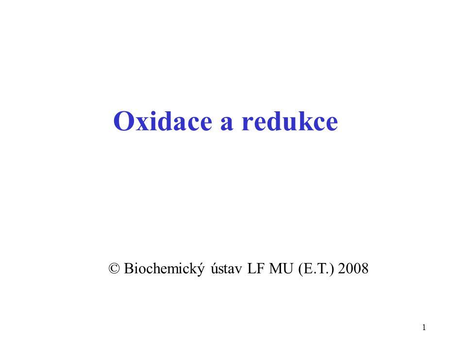 © Biochemický ústav LF MU (E.T.) 2008