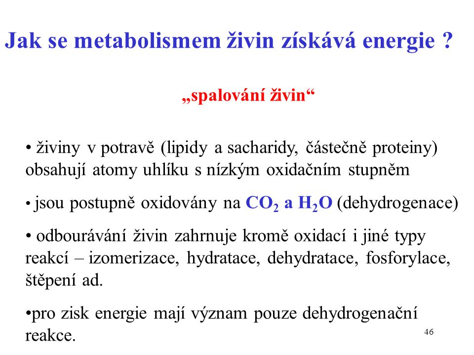 Jak se metabolismem živin získává energie