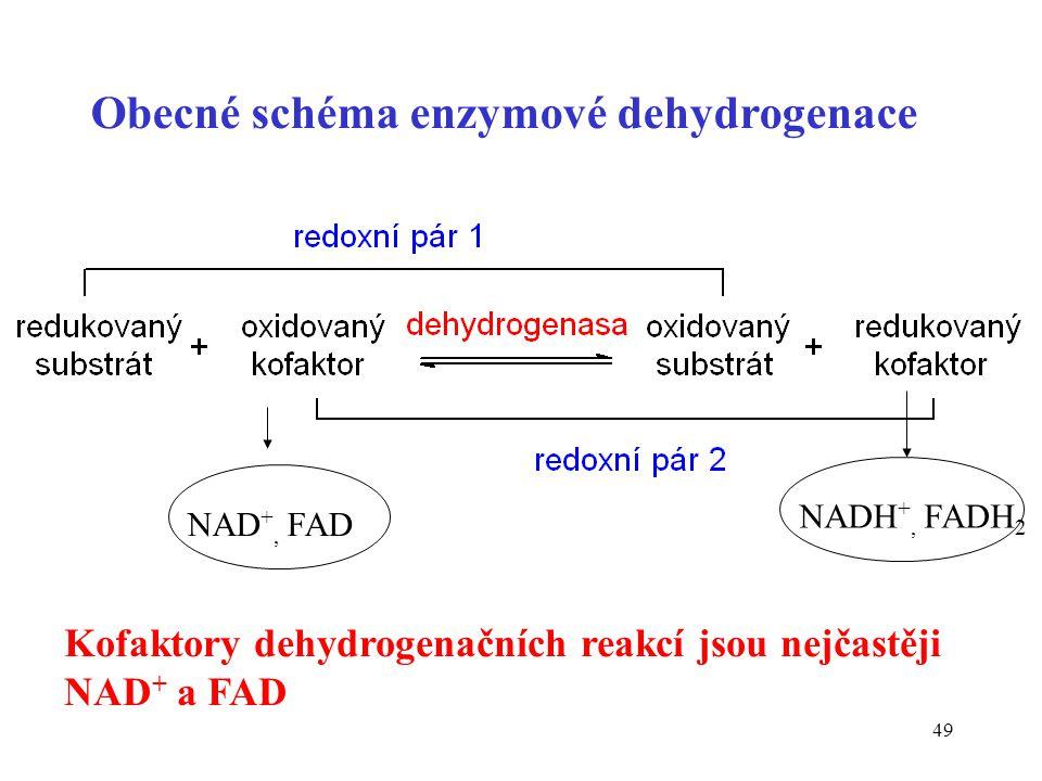 Obecné schéma enzymové dehydrogenace
