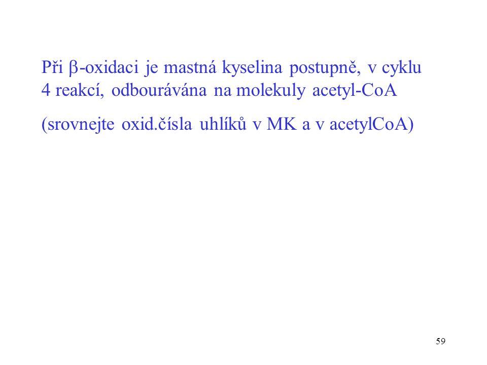 Při -oxidaci je mastná kyselina postupně, v cyklu 4 reakcí, odbourávána na molekuly acetyl-CoA