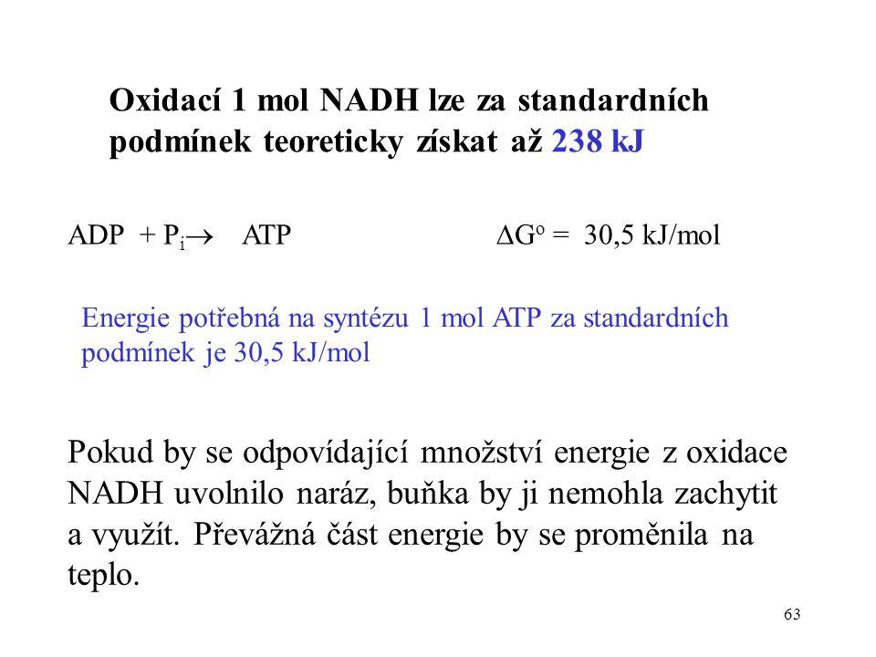 Oxidací 1 mol NADH lze za standardních podmínek teoreticky získat až 238 kJ