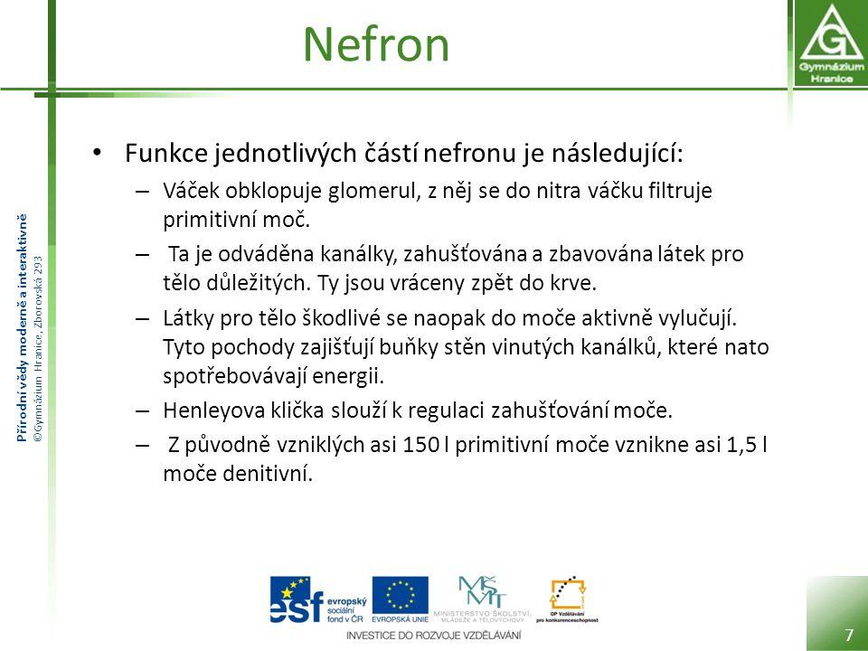 Nefron Funkce jednotlivých částí nefronu je následující: