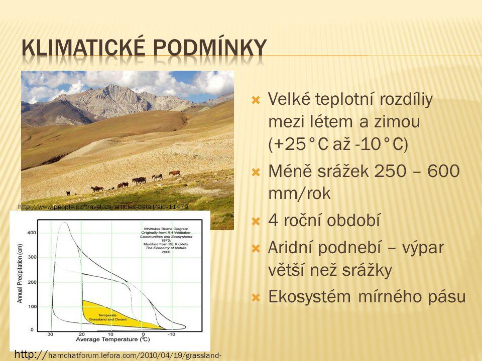 KLIMATICKÉ PODMÍNKY Velké teplotní rozdíliy mezi létem a zimou (+25°C až -10°C) Méně srážek 250 – 600 mm/rok.