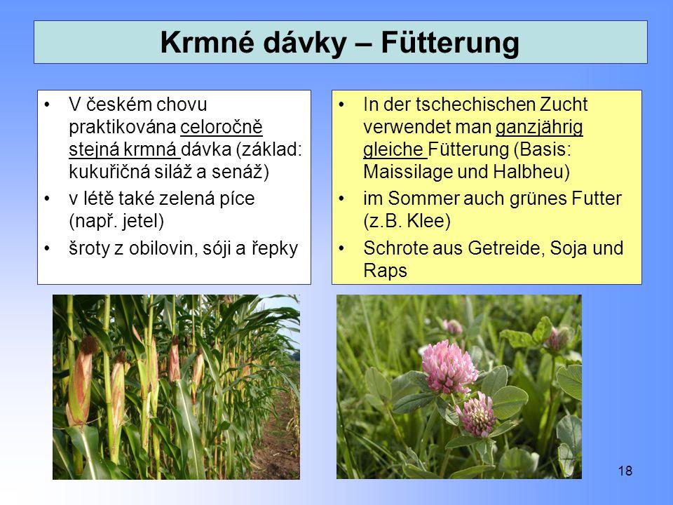 Krmné dávky – Fütterung