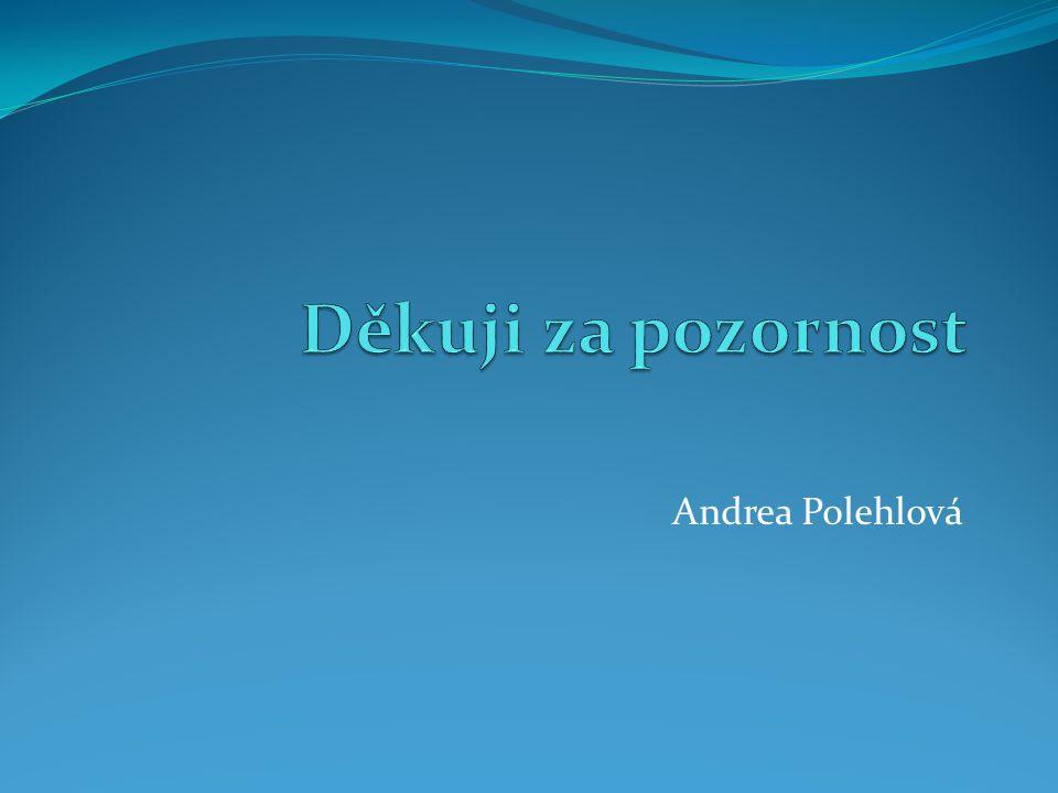 Děkuji za pozornost Andrea Polehlová