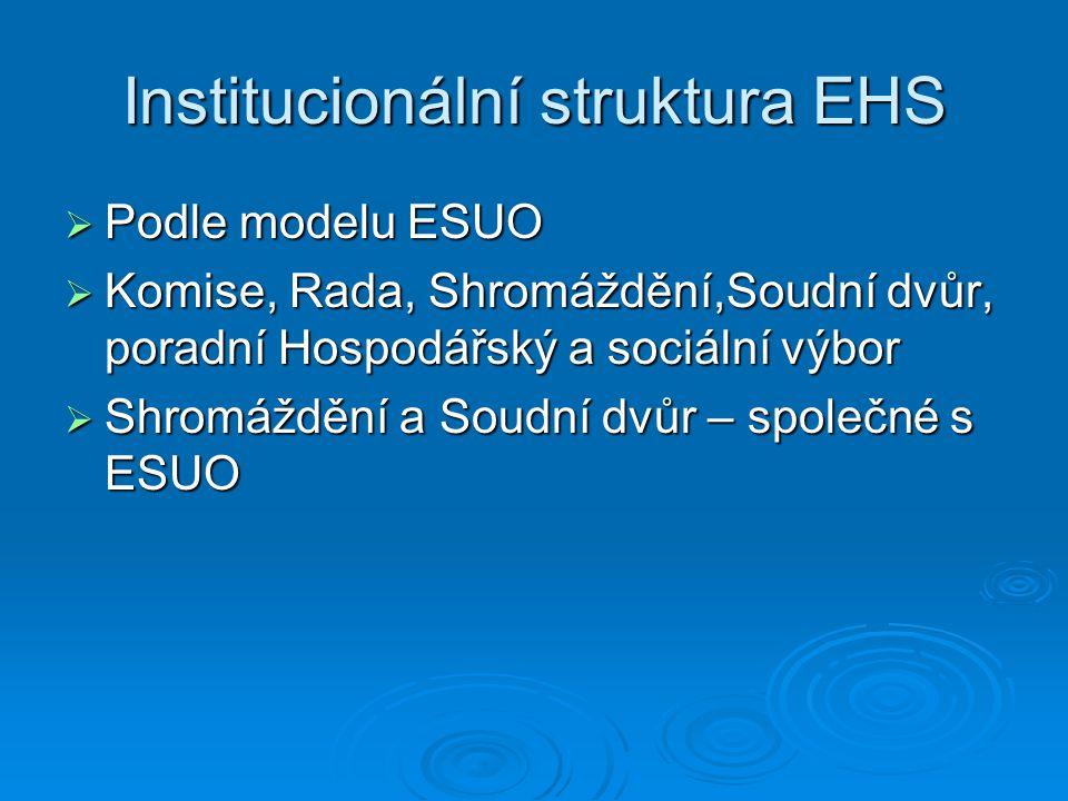 Institucionální struktura EHS