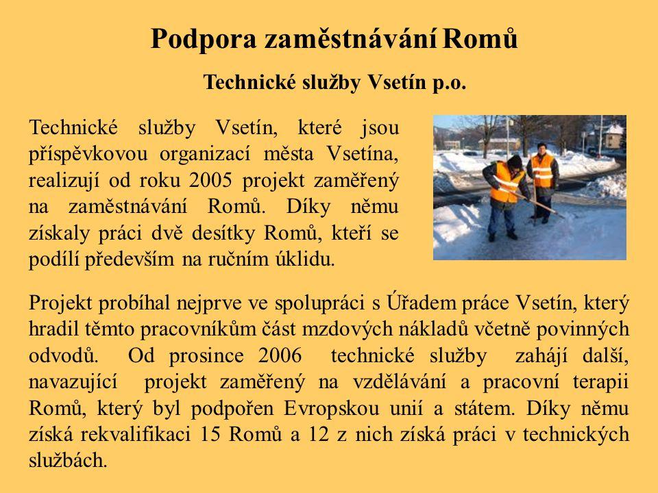 Podpora zaměstnávání Romů