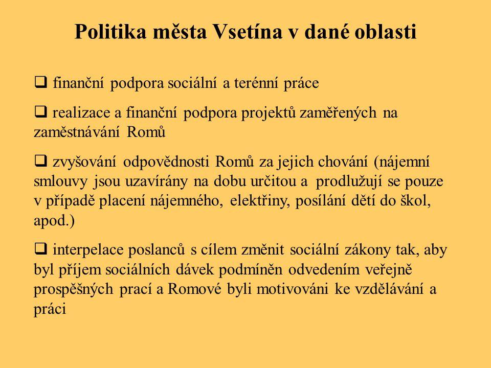 Politika města Vsetína v dané oblasti