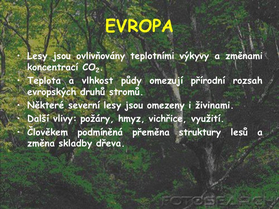 EVROPA Lesy jsou ovlivňovány teplotními výkyvy a změnami koncentrací CO2. Teplota a vlhkost půdy omezují přírodní rozsah evropských druhů stromů.
