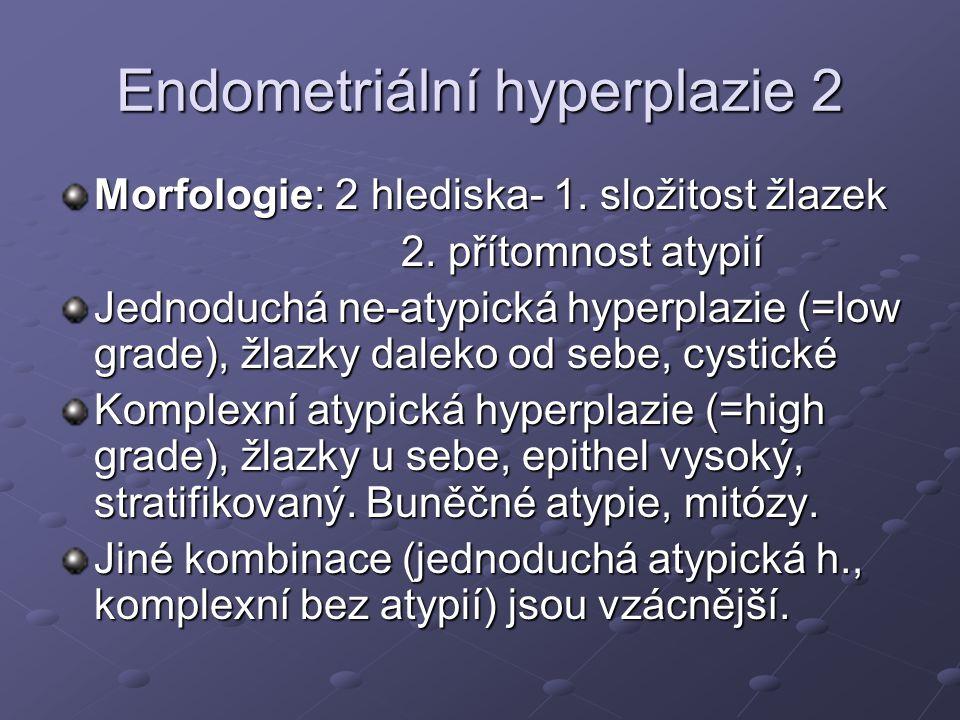 Endometriální hyperplazie 2