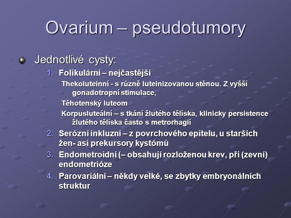 Ovarium – pseudotumory