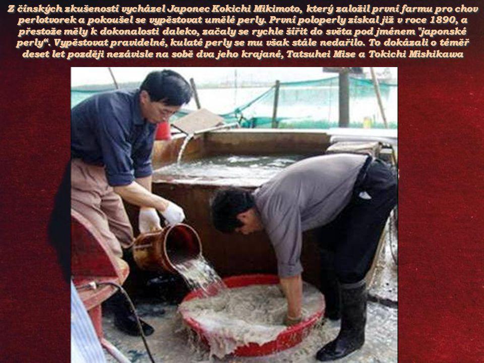 Z čínských zkušeností vycházel Japonec Kokichi Mikimoto, který založil první farmu pro chov perlotvorek a pokoušel se vypěstovat umělé perly.