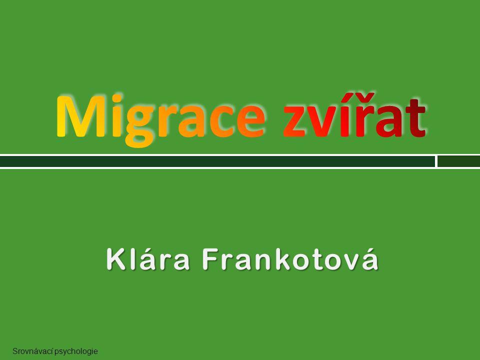 Migrace zvířat Klára Frankotová Srovnávací psychologie