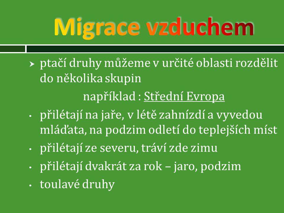 například : Střední Evropa