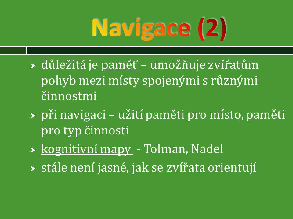 Navigace (2) důležitá je paměť – umožňuje zvířatům pohyb mezi místy spojenými s různými činnostmi.