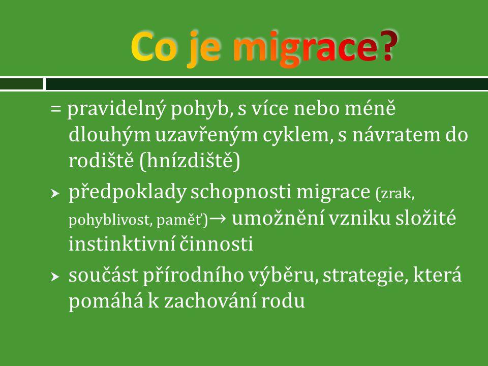 Co je migrace = pravidelný pohyb, s více nebo méně dlouhým uzavřeným cyklem, s návratem do rodiště (hnízdiště)