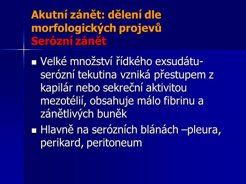 Akutní zánět: dělení dle morfologických projevů Serózní zánět