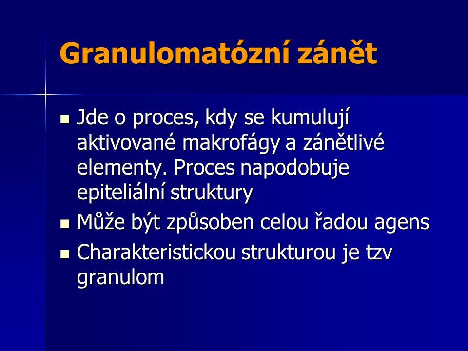 Granulomatózní zánět Jde o proces, kdy se kumulují aktivované makrofágy a zánětlivé elementy. Proces napodobuje epiteliální struktury.