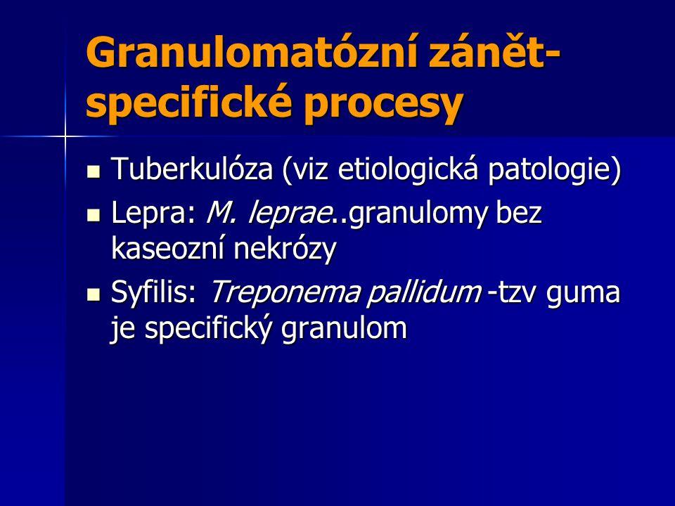Granulomatózní zánět-specifické procesy
