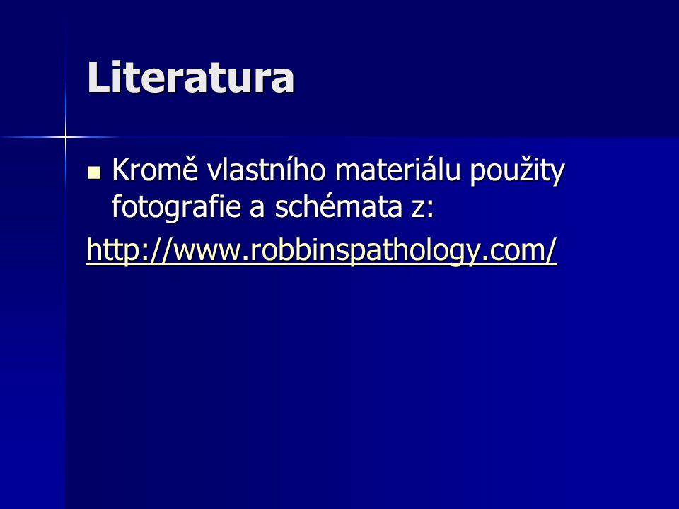Literatura Kromě vlastního materiálu použity fotografie a schémata z: